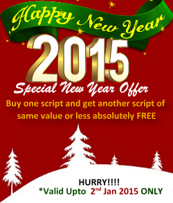 christmas discount on php scripts
